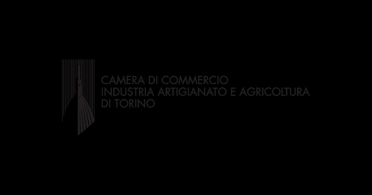 camera di commercio industria artigianato e agricoltura di torino